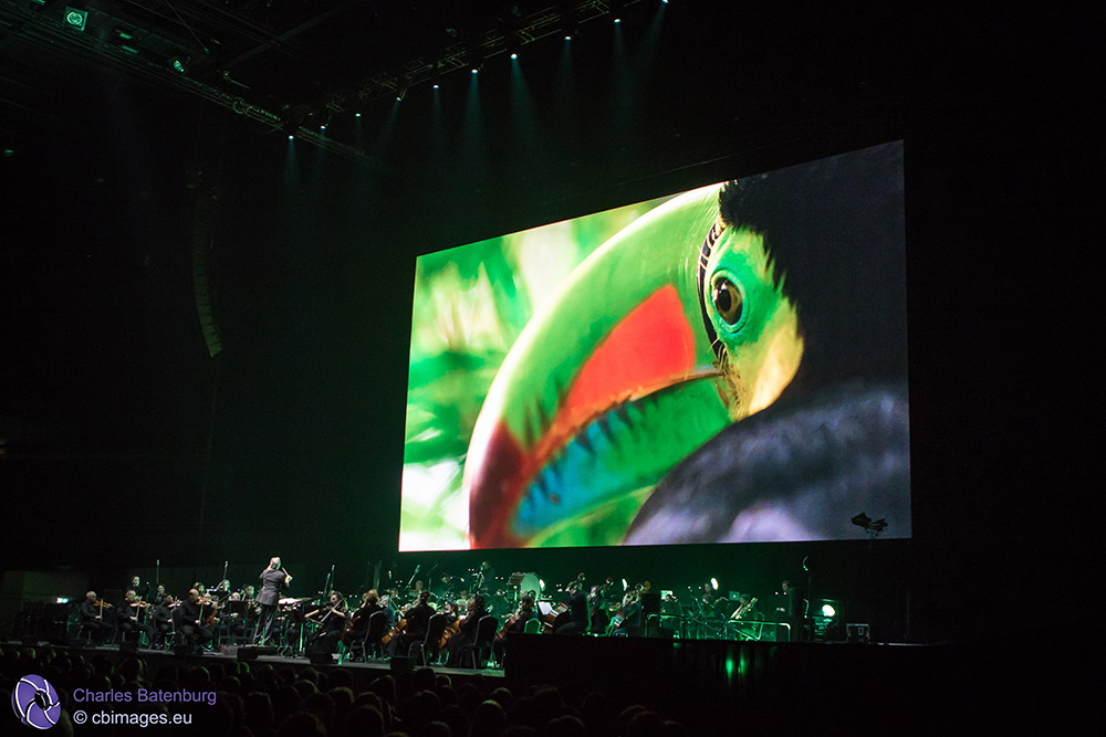 Planet Earth II – Live In Concert in Rotterdam Ahoy